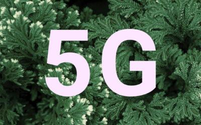 ¿Conoces el 5G verde?