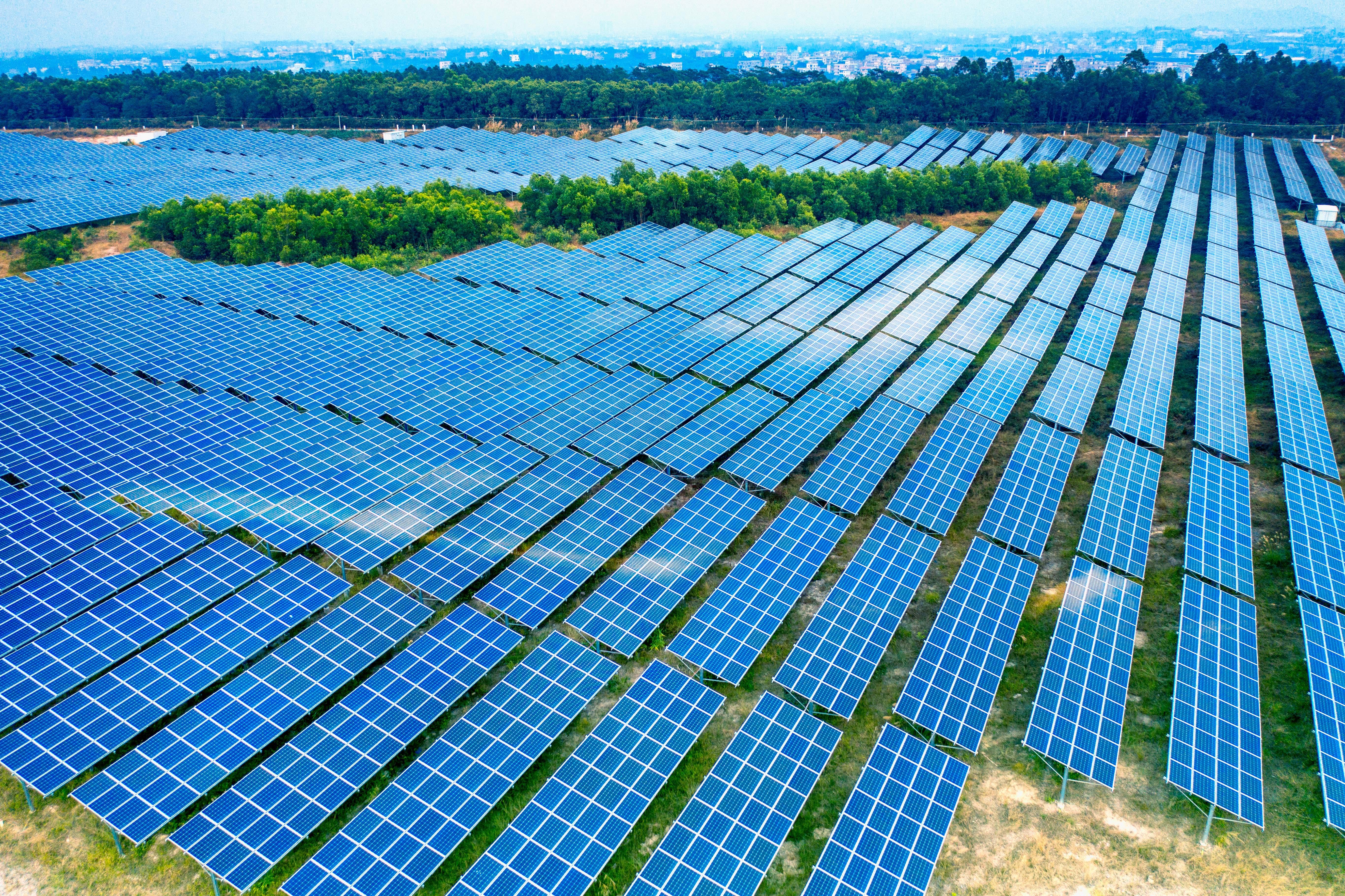 Paneles solares en el Amazonas